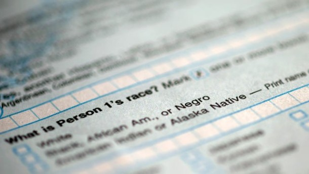 Negro Census